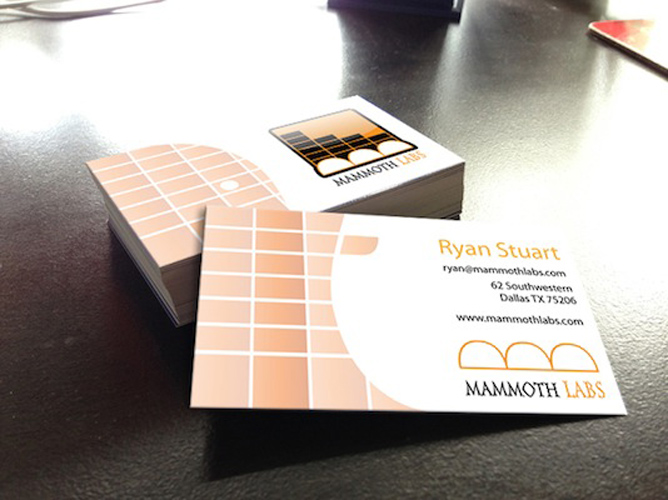 Mammoth Labs: Business Card Mockup